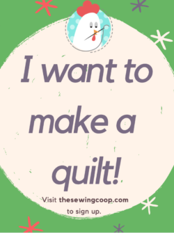quilting lecture at the sewing coop with crafty gemini